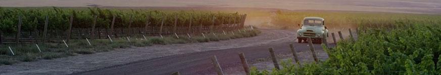 WA_Wine_Blog_Cover